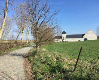 Brabant Hesbaye